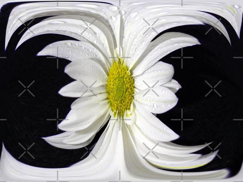Wild Flower by Maria Dryfhout