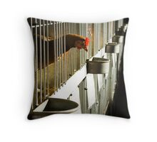 Rooster Cage Throw Pillow