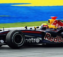 Mark Webber by gromol