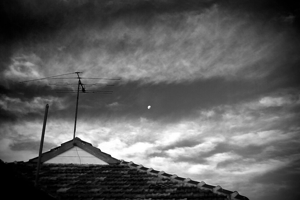 Rooftops by Phoonaz