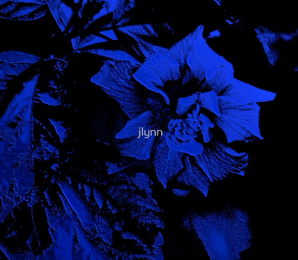 black and blue by jlynn