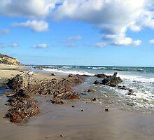 Pelican Point Beach  by Dianna