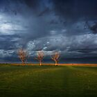 Wimmera by Jaime