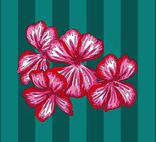 Red Geranium by dilstudio
