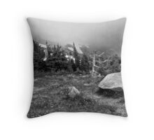 Mountain Mist Along Trailridge Road  Throw Pillow