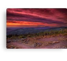 A Sunrise in the Wilderness Canvas Print