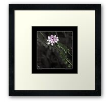 Pathway to the Crown Fine Art Poster Framed Print