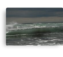 Sea sculpture Canvas Print