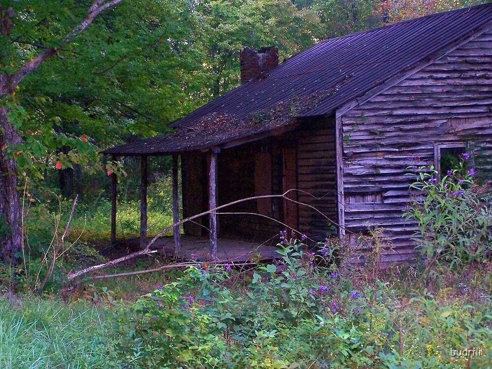in a cabin... by budrfli