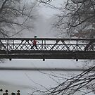 Wintry walk by Linda  Jackson