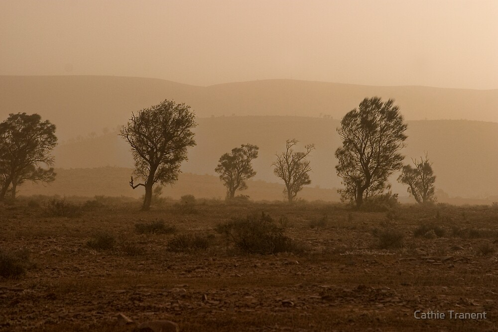 Shades of Dust by Cathie Tranent