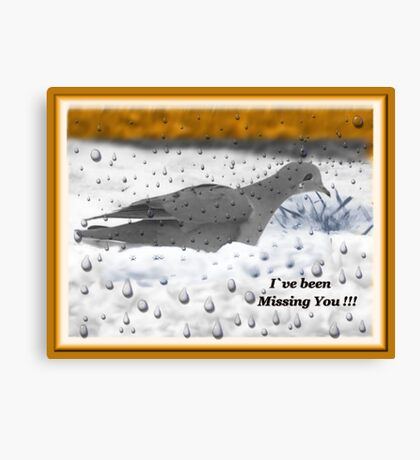 I`ve Been Missing You!!! Canvas Print