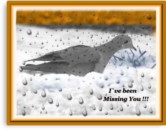 I`ve Been Missing You!!! by Starr1949