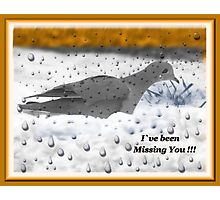 I`ve Been Missing You!!! Photographic Print