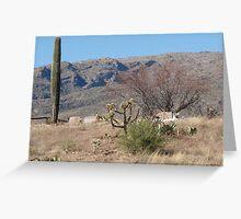 Arizona Cemetary  Greeting Card