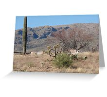 Arizona Cemetary  Greeting Card