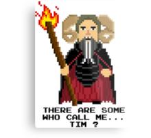 Tim the Enchanter - Monty Python and the Holy Pixel Metal Print