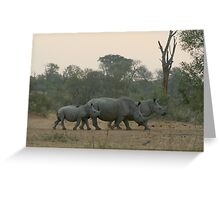 Keeping It Close, Rhino Close Greeting Card