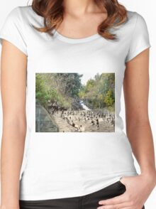 Rennie's River Women's Fitted Scoop T-Shirt