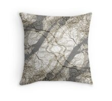 Reflective State Throw Pillow