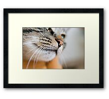 Best Loved Nose Ever... Framed Print