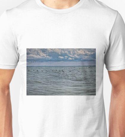 Cormorants Over Lake Erie Unisex T-Shirt