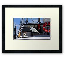 All Aboard! Framed Print