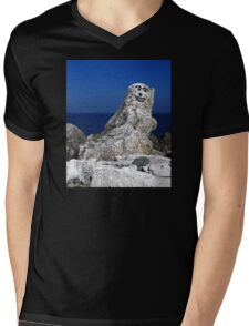 Welcome To Norn Iron...What's The Crac! Mens V-Neck T-Shirt