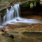 Tranquil Creek by Kim Roper