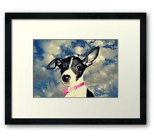 Phoebe in the sky Framed Print