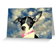 Phoebe in the sky Greeting Card