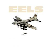 EELS - Wonderful, glorius  Photographic Print