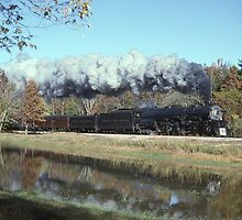 Norfolk & Western #1218 - Sylacauga, AL by TrainmasterBob