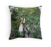 Orb Weaver Throw Pillow