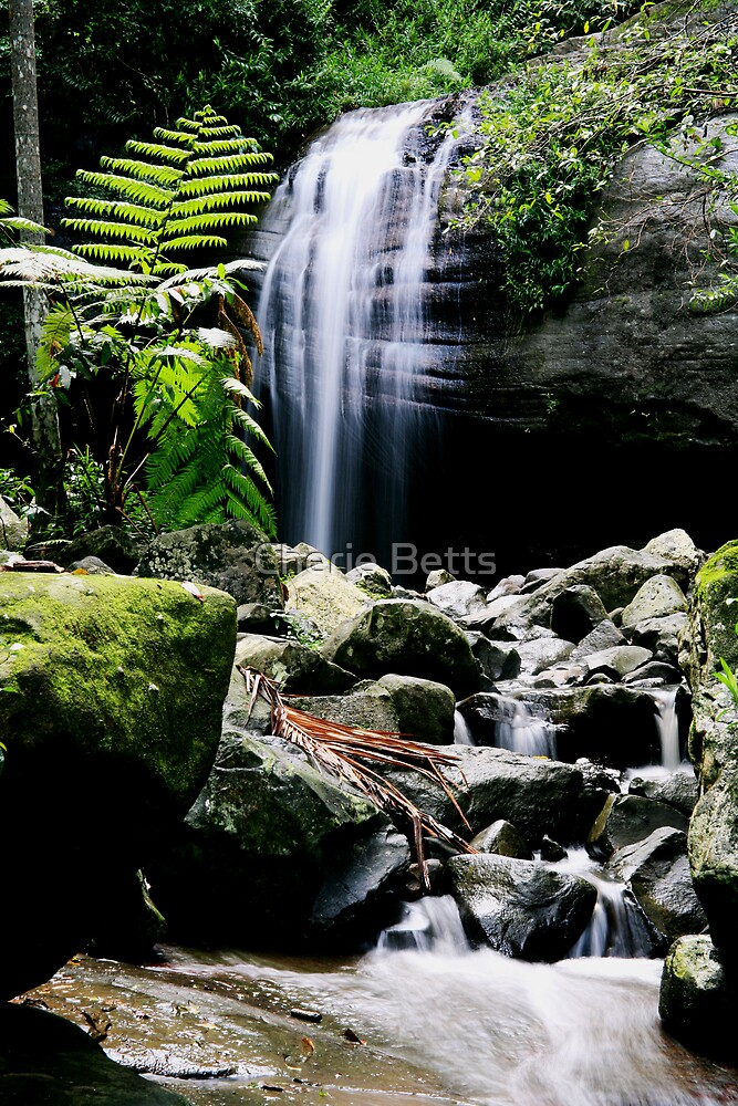 Waterfall by Cherie Betts