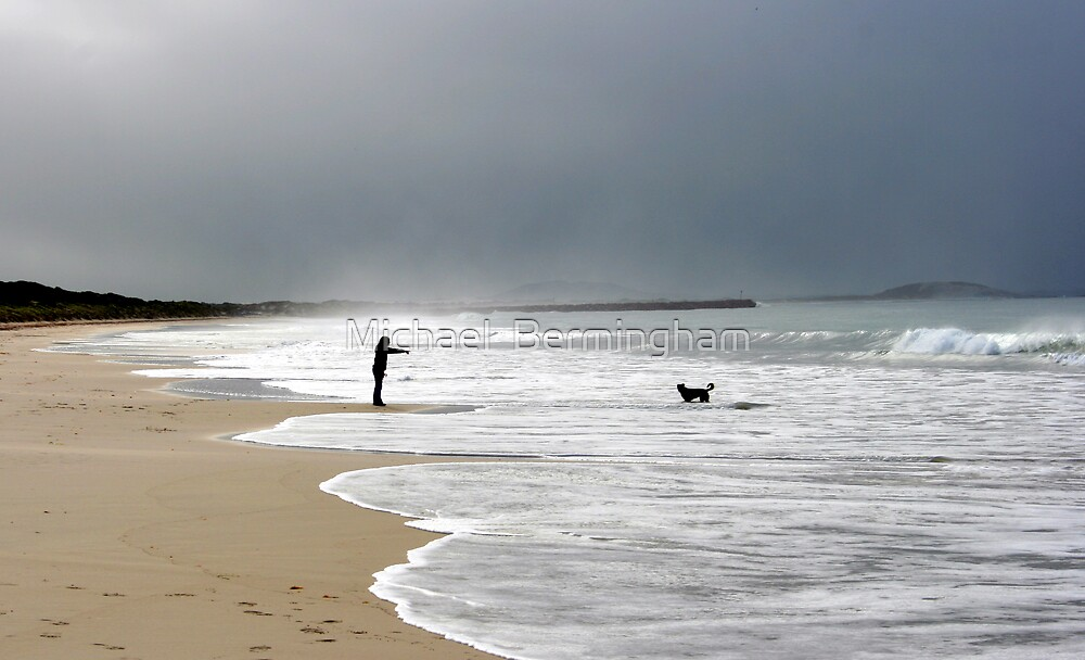 Its over there you stupid dog! by Michael  Bermingham