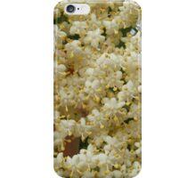 Elder flowers iPhone Case/Skin