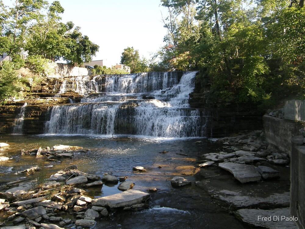 Glen Falls by Fred Di Paolo