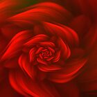 Red Rose by Kim Pease
