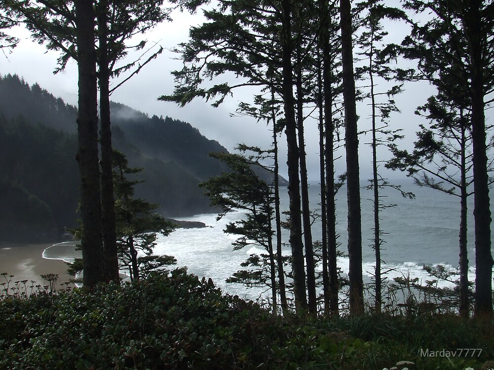 Coastline - near Florence, Oregon by Mardav7777