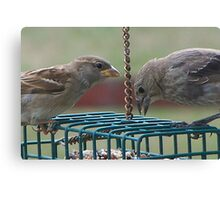 They Mingled with Sparrows Canvas Print