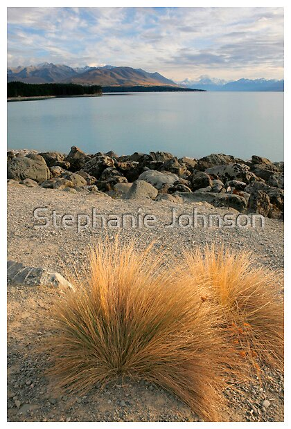 Early morning at Lake Pukaki by Stephanie Johnson