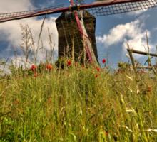 Windmill poppies  Sticker
