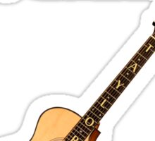 Taylor Acoustic Guitar Sticker
