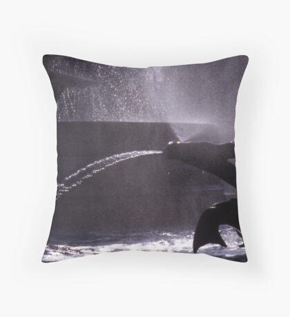 Trafalgar Summer 1 Throw Pillow