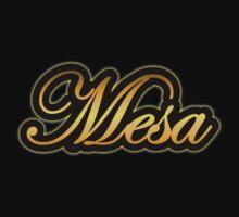 Mesa  Amp Vintage Gold Kids Clothes