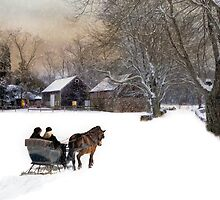 The Last Mile Home by Robin-Lee