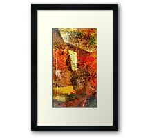 The door into the light Framed Print