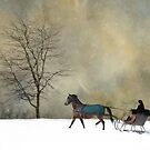 The Merry Trotter by Robin-Lee