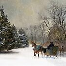 The Christmas Sleigh by Robin-Lee